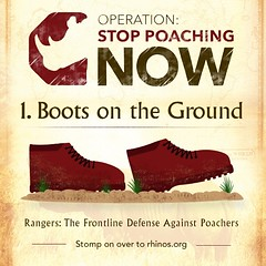 "The war against #poaching – be it for #rhinos, #elephants or any other endangered species – eventually will be won by having more ""boots on the ground"". Experienced teams of rangers, trackers, monitors and other trained professionals form the critical fro"