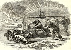 "Image from page 399 of ""Arctic explorations: the second Grinnell expedition in search of Sir John Franklin, 1853, '54, '55"" (1856)"