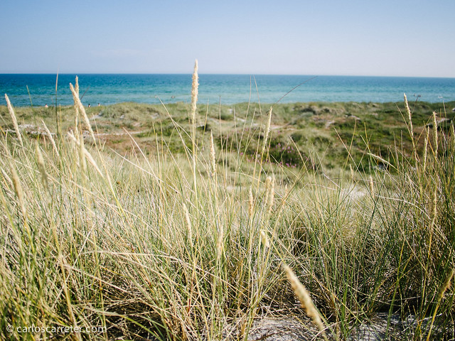 Playa de Falsterbo (S)