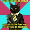 pdc-catcalls