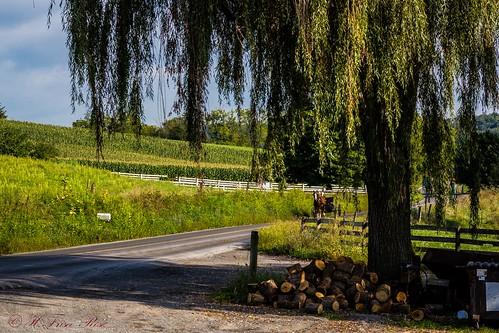 pennsylvania amishcountry countryside farmland