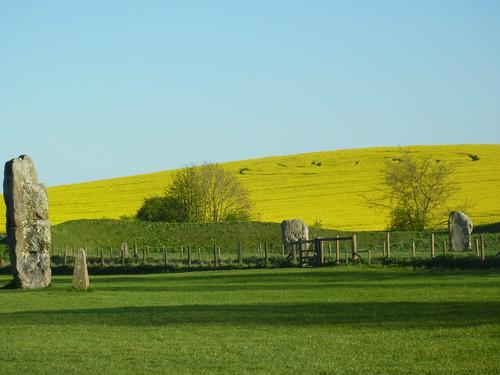 Avebury Crop Circle