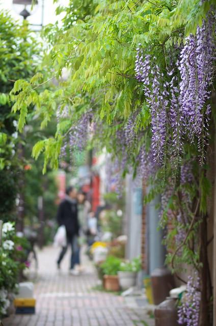 東京路地裏散歩 2014年4月20日