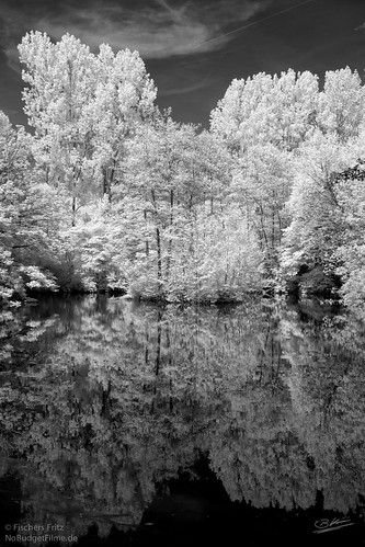 Teich_III-Infrared.jpg