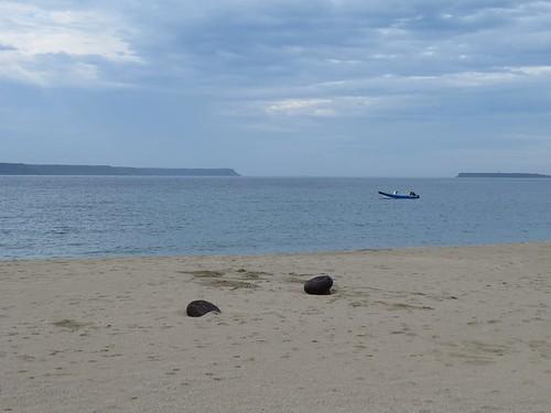 嵵裡沙灘(圖片來源:海洋公民基金會)
