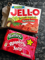 jelly pudding