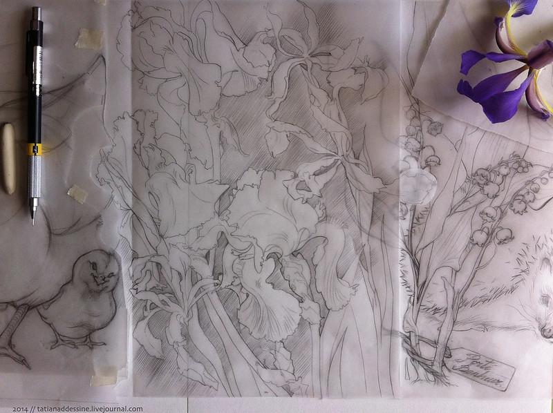 17 page au crayon