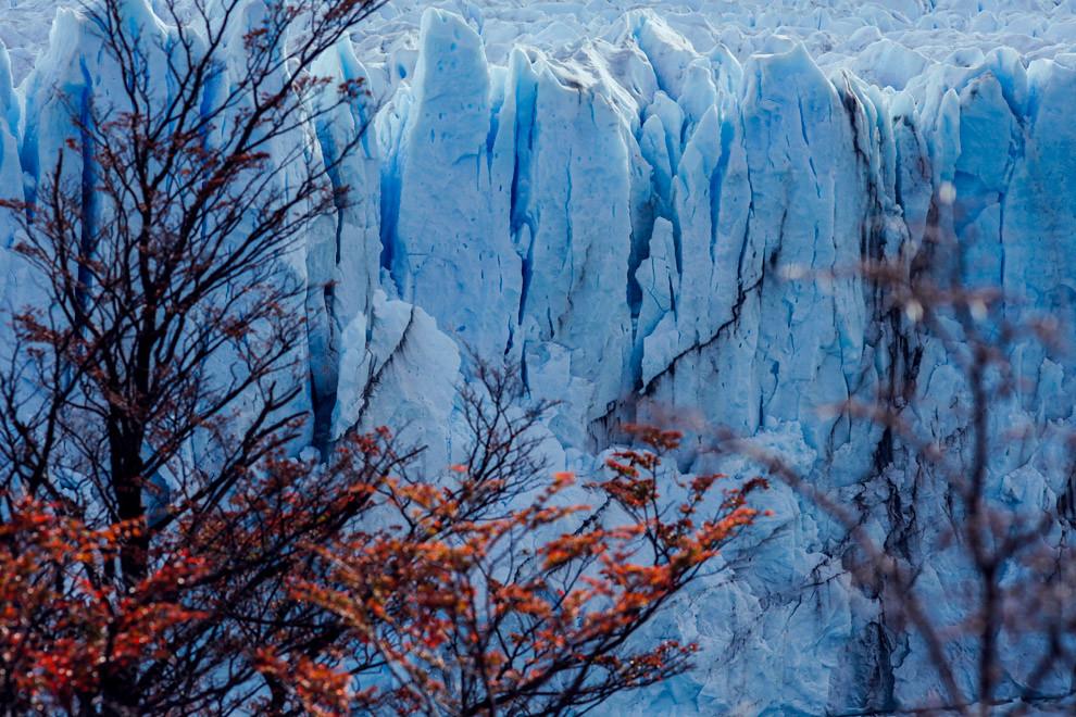 El Glaciar Perito Moreno se encuentra en constante cambio y movimiento con las distintas estaciones. (Santiago Ortiz).