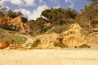 Image of Praia Maria Luísa near Albufeira. costa beach portugal coast playa arena algarve turismo albufeira acantilado rocas vegetación erosión sedimentos physicalgeography paisajenatural biogeografía geografíafísica