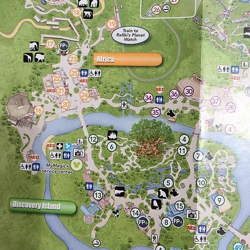 6/1からのディズニー・アニマルキングダムガイドマップ。パレードルートがなくなり、新しいシアターが追加。