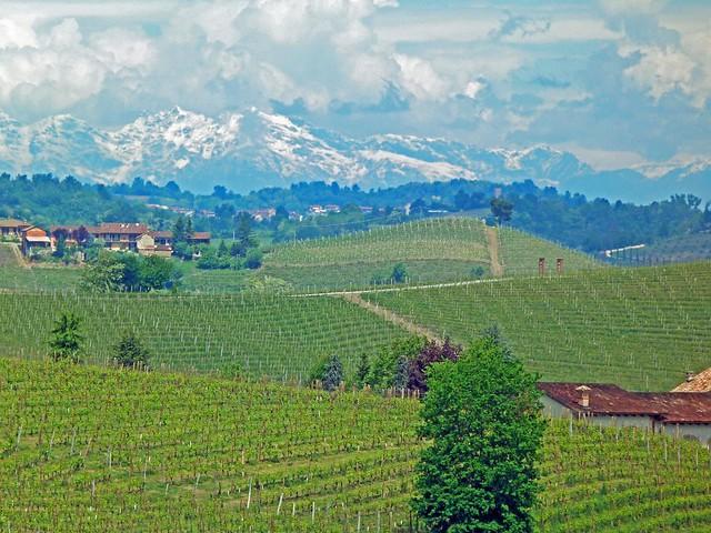 Las Langas (Piamonte, Italia)