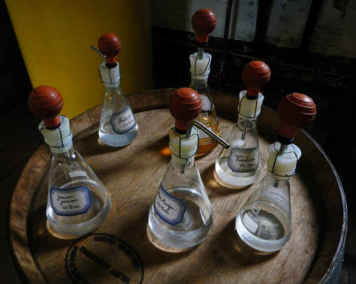 the Gin Museum flasks in Hasselt, Belgium