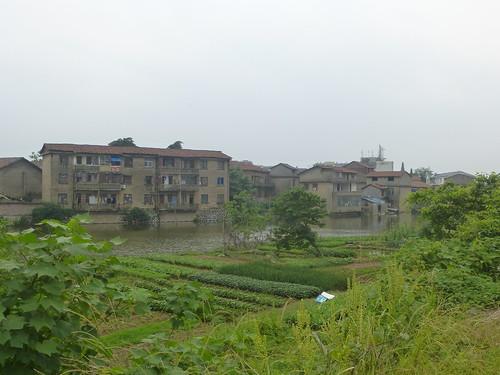 Jiangxi-Yushan (126)