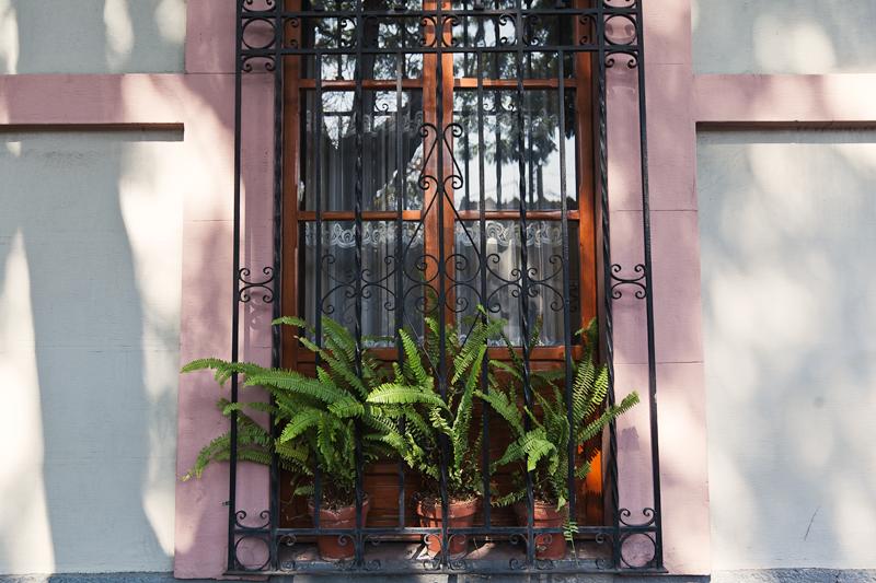 Colonia del Carmen