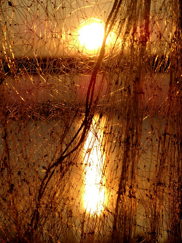 sunset sun reflection net fishing monotone through fotocompetition fotobronze fotocompetitionbronze herowinner storybookwinner