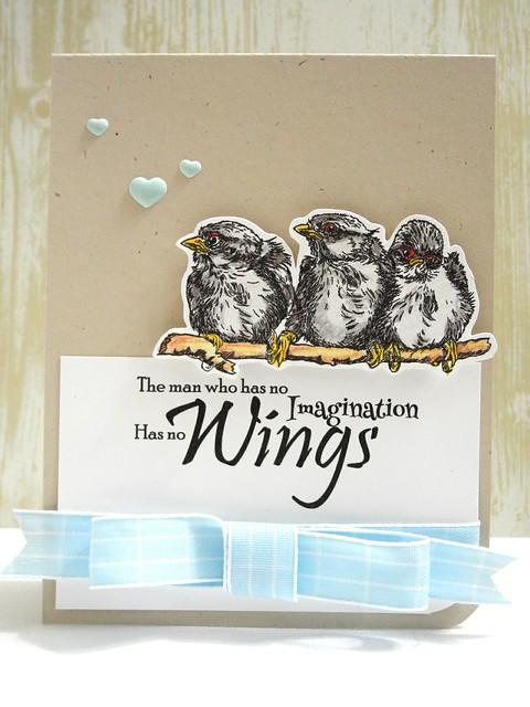 No Wings