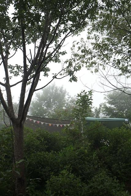 2014.06.22[新竹五峰]兔子先生現身了085