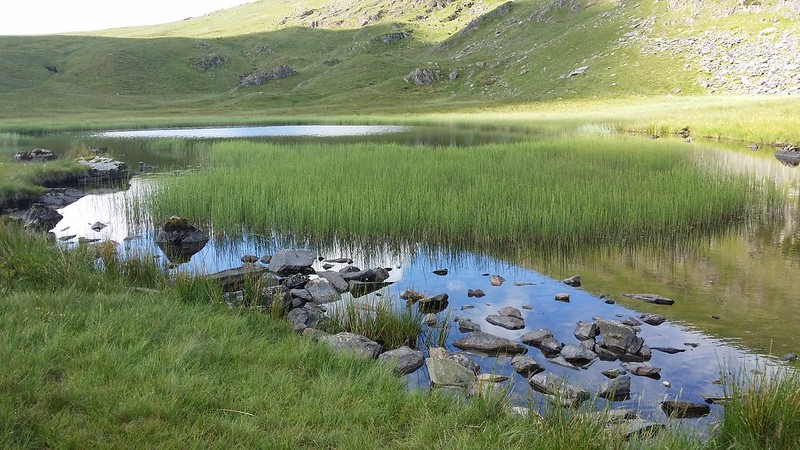 Dalehead Tarn #10in10