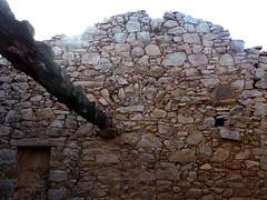 Hameau de Pruna : le faîte de la 3ème grande maison ruinée depuis l'escalier et la porte de communication intérieure