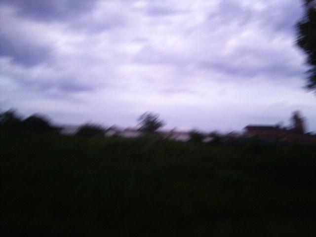 PIC_1369