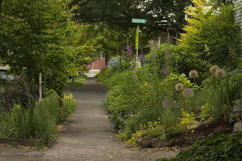 North Garden from West