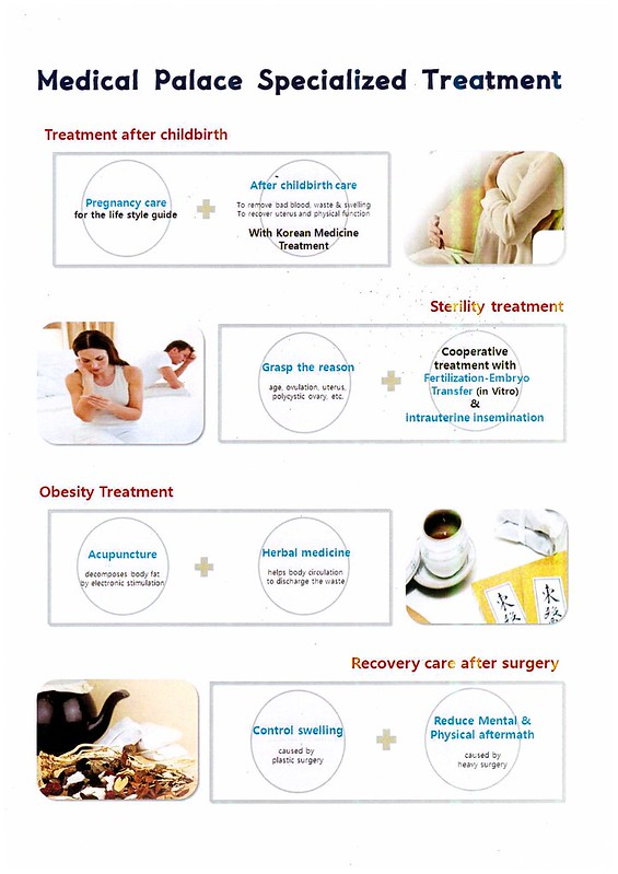 oriental treatment - medical palace korea4