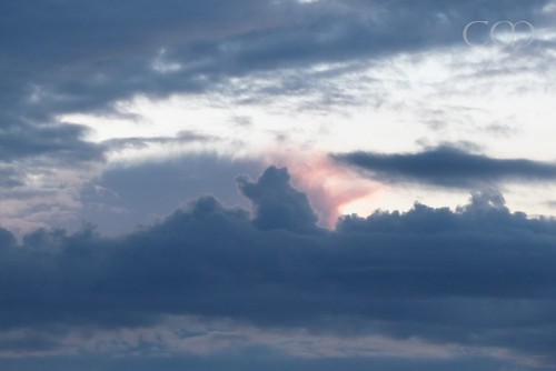 ...and then a tiny Elephant came flying across the sky..:)