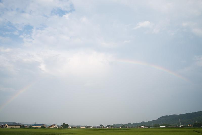 rain雨bow弓