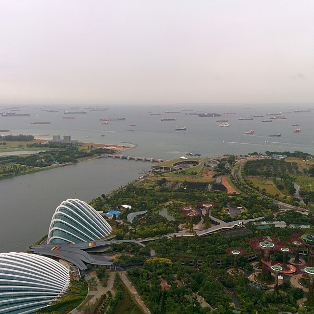 View from the top of Marina Bay Sands looking down at Garden's by the Bay.