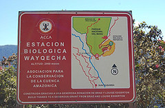 Wayqecha Biological Station