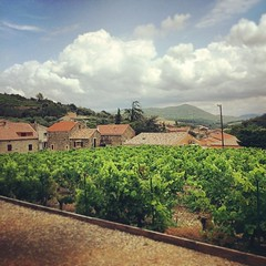 "Vue sur #Berlou de la villa ""Casa Berlou"" #moerland #languedoc #herault #igersmontpellier #iphone5s #clouds #view"