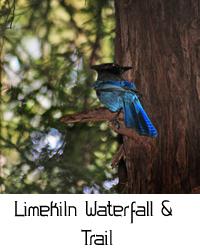 limekiln waterfall