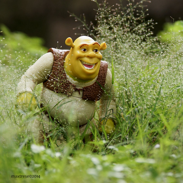 McDonalds Happy Meal toy - Shrek