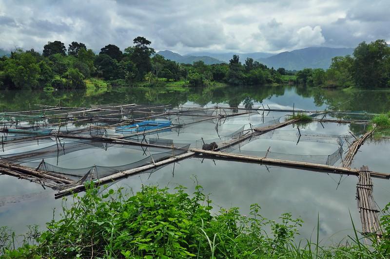 Piddig Water-Impounding Dam