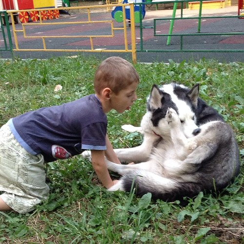 И двадцать с хвостом лет назад, когда на детских площадках было можно курить, старший брат Пети точно так же проводил время рядом с площадкой среди животных! #москва