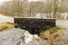 Elan Valley - Gigrin Farm 090