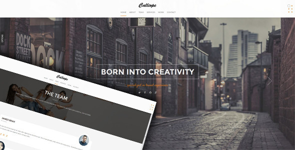 Calliope v1.0 - Portfolio Agency WordPress Theme