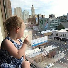 Our #princess loves to look at the window. #columbus #ohio