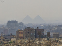 Foreign Investment in Egypt