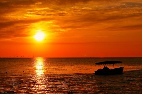 Take Sun, Clouds, Bird And Boat. Just Add Water. - IMRAN™