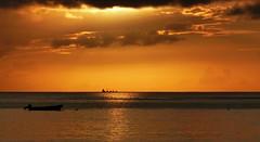 Barbados Golden Sunset