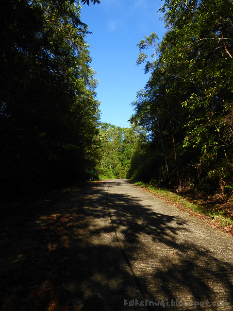 Mount Serapi Trail