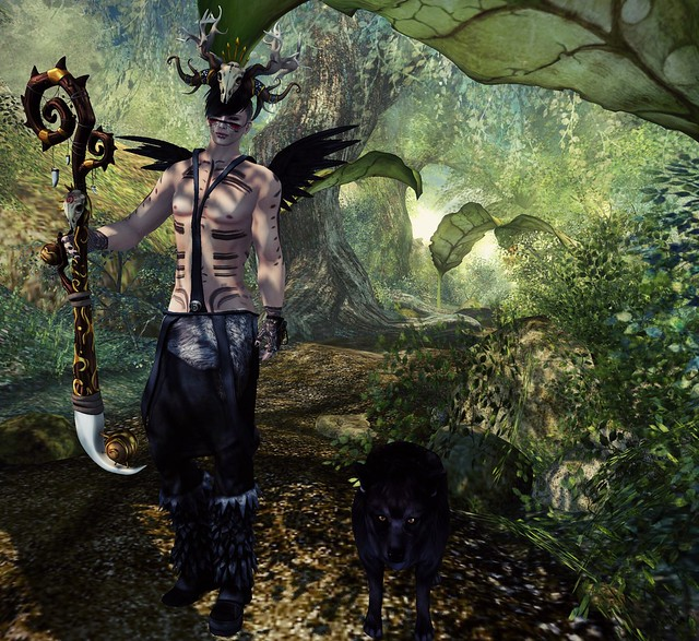 .Druid.