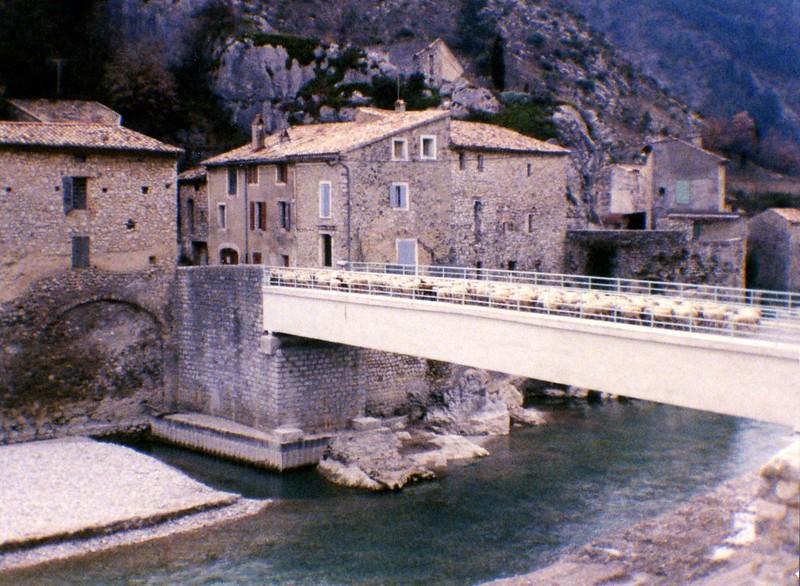 Transhumance: Passage du pont
