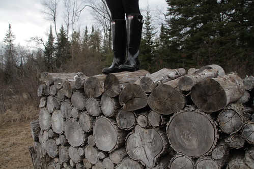 Thawed woodpile {the spring edition}