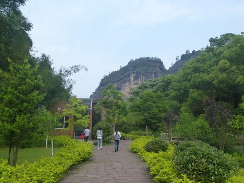Fujian-Wuyi-Shuillandong-Dahongpao (1)