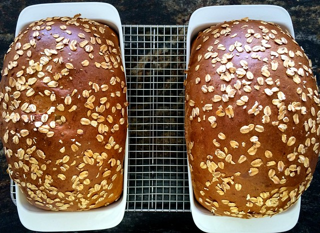 Bread Loaves After Baking
