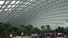 Under the Flower Dome