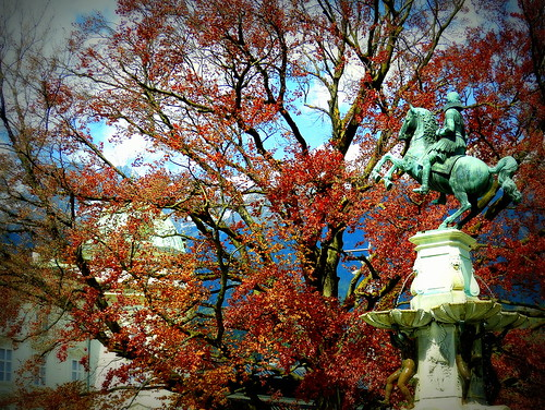 A statue and a red tree in Innsbruck