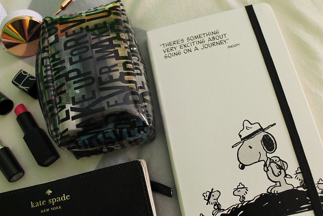 in-my-bag-peanuts-moleskins